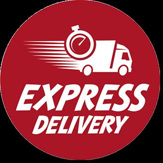 express-delivery-logo-u53511